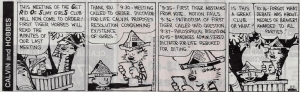 Calvin & Hobbes Lesson in Governance